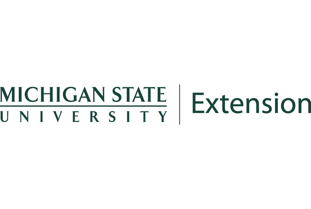 Michigan State University Extension 4H Portfolio Image | BrickStreet Marketing